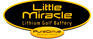 Buy Little Miracle golf equipment at lowest UK price guaranteed from authorised UK stockist.